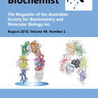 The August 2018 Australian Biochemist magazine is now online.