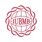 Issue 6 of IUBMB News